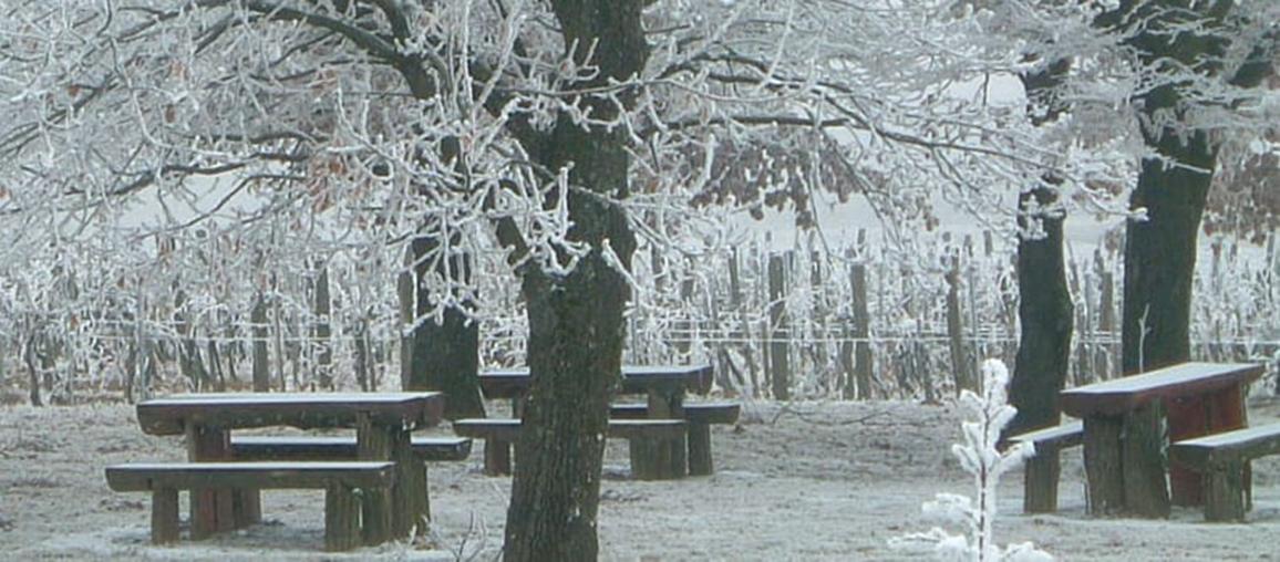 Vylyan Tél