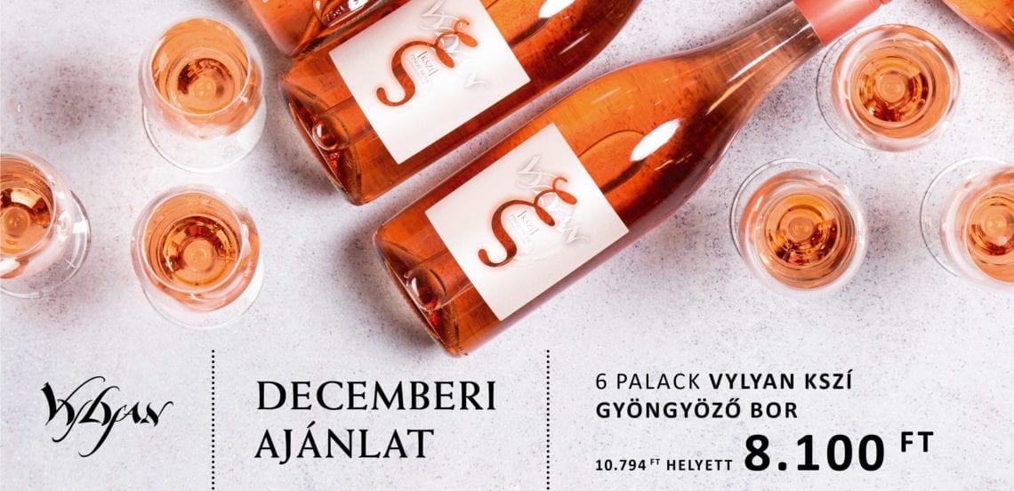 Vylyan-2019-Decemberi-ajanlat